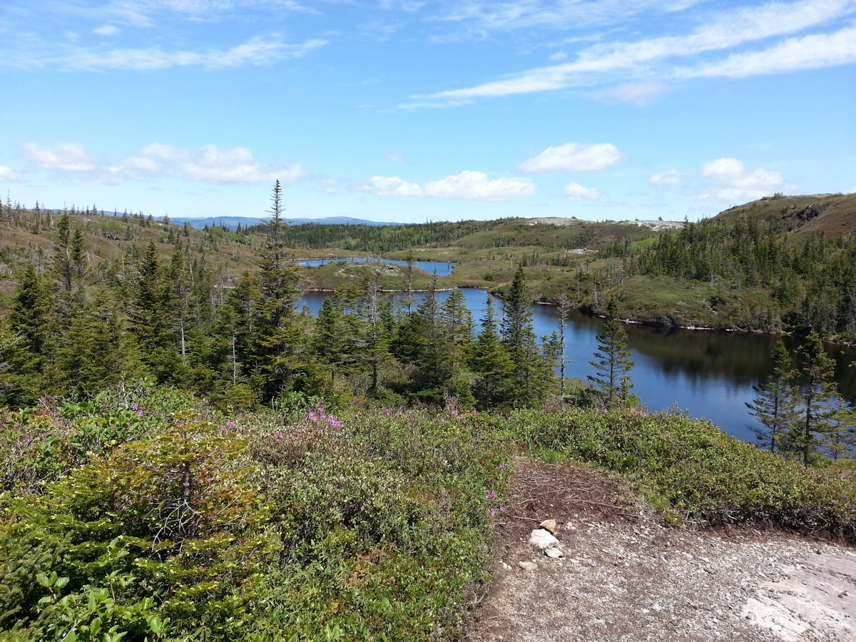 View behind Erin Mountain in Barachois Pond Provincial Park